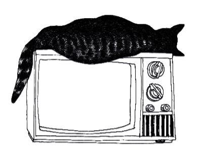 JER_kitty sleeping on television set.jpg