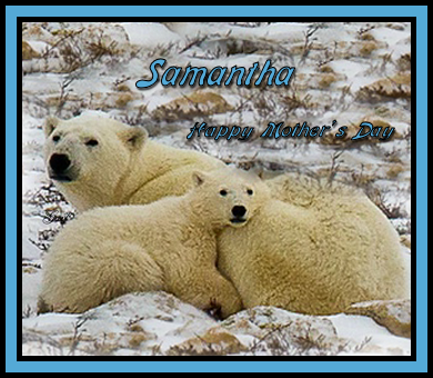 Samantha-gailz-polar bear family-misted by bjp