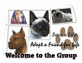 dcd-Welcome to the Group-Adopt a Friend-MC.jpg