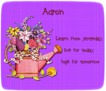 Aaron-gailz-watering can with flowers02 dhedey