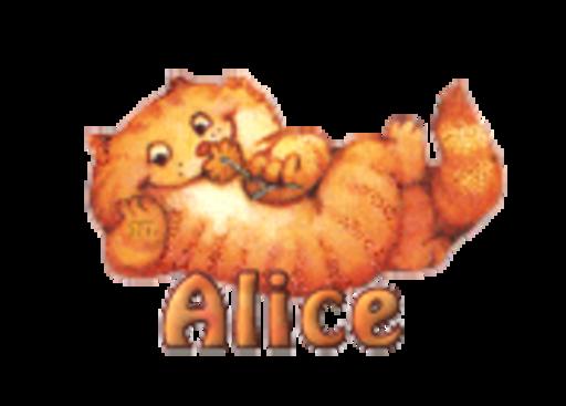 Alice - SpringKitty