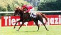 ZEFIRO DE NULVI (Rubis de Carrere x Zulema by Djourman) 1995 chestnut stallion