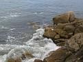 Monterey Trip Aug07 027.jpg