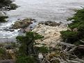 Monterey Trip Aug07 374.jpg