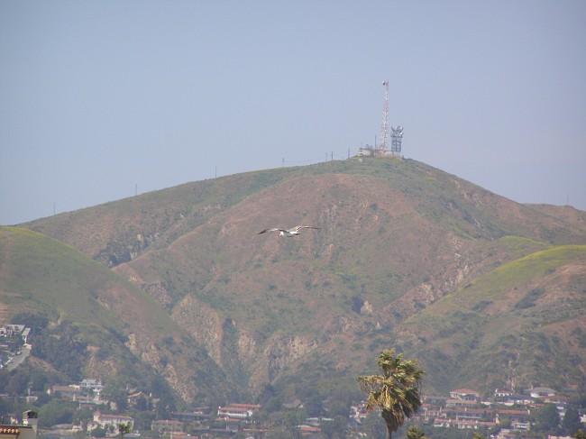 April 2008 123.jpg