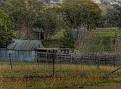 Mumbil Farm 001