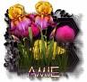 Amie - 3094