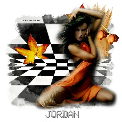 JordanBlocksbyWilma-vi