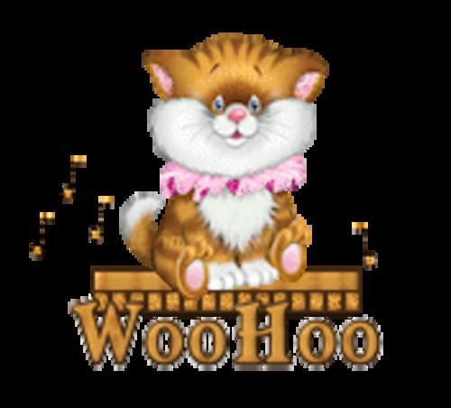 WooHoo - CuteKittenSitting