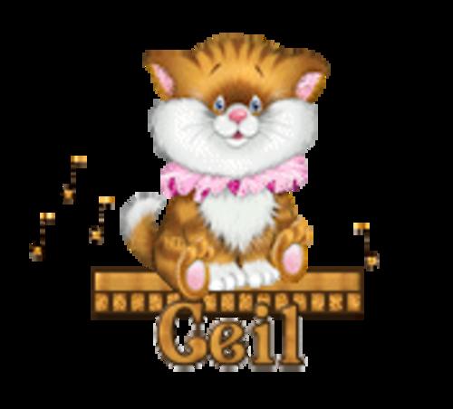 Ceil - CuteKittenSitting