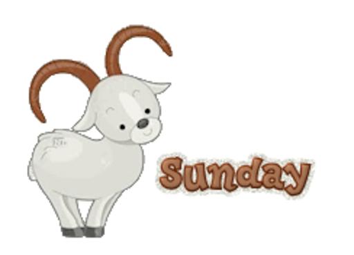 DOTW Sunday - BighornSheep