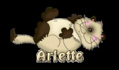 Arlette - KittySitUps
