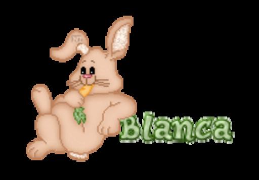 Blanca - BunnyWithCarrot
