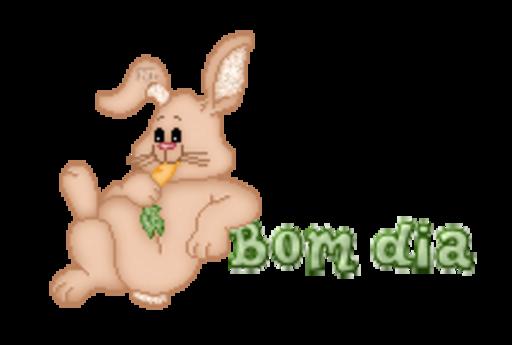 Bom dia - BunnyWithCarrot