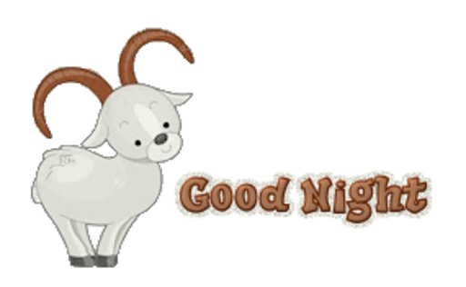 Good Night - BighornSheep