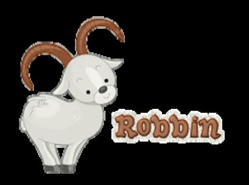 Robbin - BighornSheep