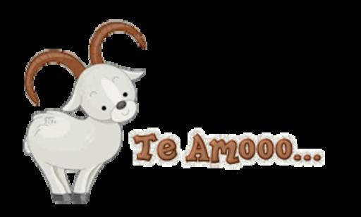 Te Amooo - BighornSheep