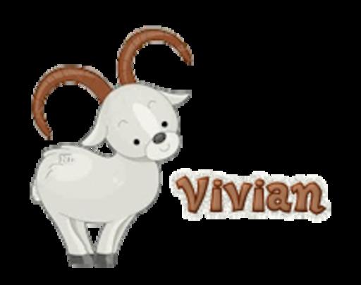 Vivian - BighornSheep