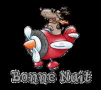 Bonne Nuit - DogFlyingPlane
