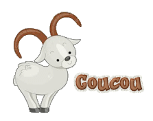 Coucou - BighornSheep