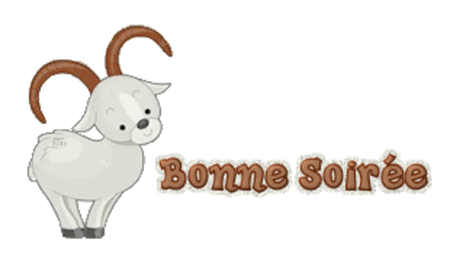 Bonne Soiree - BighornSheep