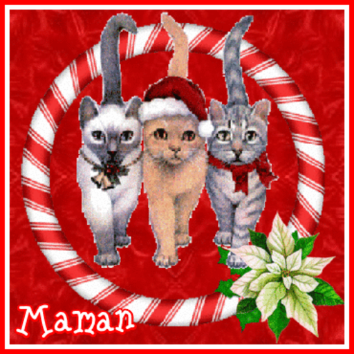 Maman - XmasKitties-Sandra-Dec 9, 2018