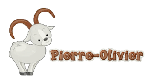 Pierre-Olivier - BighornSheep