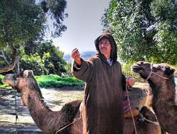 Camel Rides Morocco