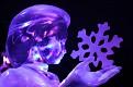 Brugge Frozen Ice Sculptures 2013 (50)