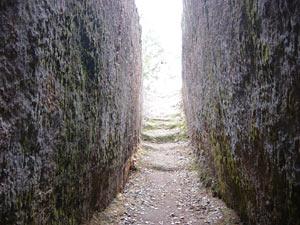 41-nekropol