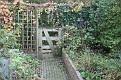 Garden 2011 November 6 (7)