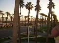 Dr. George Palm Desert 2012 011.JPG
