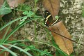 20080104 - Costa Rica - 138-sm