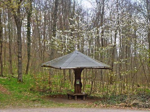 Picknick-Schirm