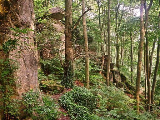Holzener Klippenwand