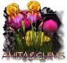 Anita&Chins - 3094