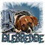 1BlessedBe-blujeanpup-MC
