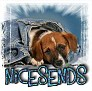 1NiceSends-blujeanpup-MC