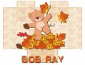 Bob Ray-gailz1106-autumn_16bear43.jpg